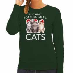 Kitten kerst sweater / outfit all i want for christmas is cats groen carnaval dames