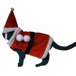 Mini kerst outfit carnaval huisdieren