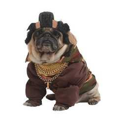 Mr. T outfit carnaval honden