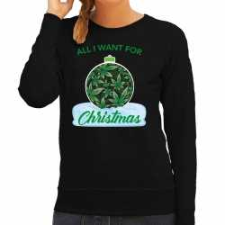 Wiet kerstbal sweater / outfit all i want for christmas zwart carnaval dames
